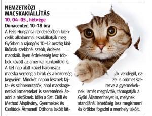 macskak.